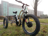 48V 500W de la carga del neumático Fat triciclo triciclo eléctrico de tres ruedas de la pantalla LCD de la batería de litio con un pedal