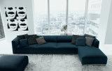 La combinación de tejido de diseño moderno y nuevo sofá
