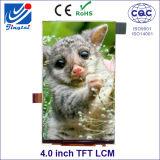 colore 480 RGB X di 16.7m 800 3.97 pollici IPS TFT LCM