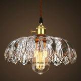 Illuminazione dell'interno moderna per l'attaccatura della lampada Pendant in lampada della decorazione