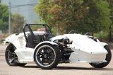 De Autoped Trike Drie van Ztr 250cc Trike 300cc van de Open tweepersoonsauto van Trike de Fiets van Wielen voor Ddults