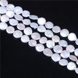 硬貨によって培養される淡水の真珠は12-13mmのサイズAAの品質に玉を付ける