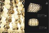 Accensione di vetro dei pendenti della lampada del lampadario a bracci (SL29174-12)