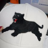 Бейсбольная кепка типа вышивки способа изготовления крышки OEM животная