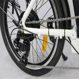 En15194ペダルによって助けられる折る電気バイク(RSEB-107)