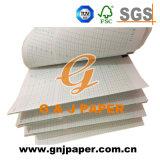 Núcleo de plástico papel gráfico con Green Grid para imprimir