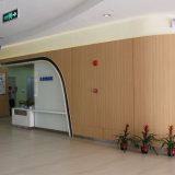 Panneaux muraux intérieurs durables et exquis