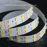 Le SMD5050-WN120 12V Bande LED double rangée