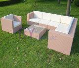 Muebles al aire libre determinados del jardín del sofá del sofá de la rota del PE