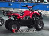 최신 판매 세륨 승인되는 48V 800W 전기 ATV