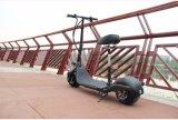 Piccolo motorino elettrico di Harley con la batteria di litio di 350W 48V/10ah