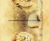 Löwe Pigment&Disperse der Wüsten-100%Polyester druckte Gewebe für Bettwäsche-Set