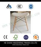 Hzpc157 o projeto novo e fresco a cadeira plástica