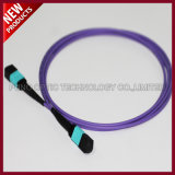 24F Array PSG du PSG à fibre optique multimode OM3 Câble de raccordement de lignes réseau