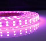 Двухрядный 5050 RGB газа/светодиодный индикатор