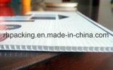 La scheda ondulata dello strato/scanalatura dei pp/ha ondulato il fornitore di plastica della scheda con la serie della stampante della foto