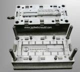 Modelagem por injeção plástica personalizada do molde do projeto estrutural