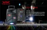 12 Spreker van DJ van de Batterij van Bluetooth van de duim de Draagbare Openlucht met LEIDEN Licht