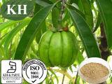 Extrait Citric&Nbsp hydroxy de gomme-gutte de Garcinia d'approvisionnement d'usine ; Acide 50%, 60%