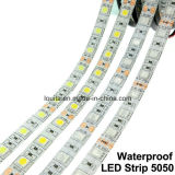 Striscia verde di 300LEDs SMD5050 LED