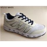Le sport 2017 occasionnel neuf chausse le numéro de type : Shoes-1717 fonctionnant Zapatos