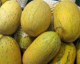 Het Poeder van het Fruit van de Meloen van Hami voor het Aroma van de Drank en van het Voedsel