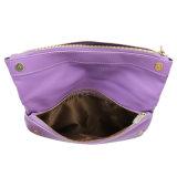 Späteste Entwürfe der Handtaschen und des Fonds für Handtaschen-Ansammlungen der Frauen