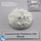 China-Steroid Hormon-Puder-Testosteron Sustanon 250