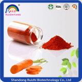 Polvere del concentrato della carota