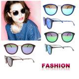 Оптовая торговля женщинами моды солнечные очки Вэньчжоу на заводе солнцезащитного стекла