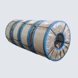 Bobina d'acciaio placcata bicromato di potassio (TFS0101)