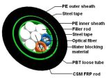 Câble fibre optique de gros (GYFTS53)