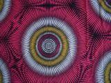 FDY Spandex gedrucktes Knit-Gewebe