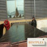 防水Film Faced Plywood、Construction Plywood 1220*2440*9-21mm