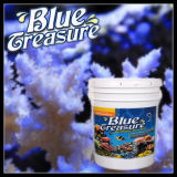 파란 보물 바다 수족관 바다 소금