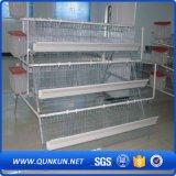 Sistema della gabbia del pollo di prezzi di fabbrica da vendere
