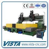 Perforatrice del doppio dell'asse di rotazione piatto di CNC (DM6020/2)