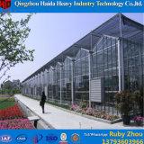 Stahlrahmen-im Freien Gemüseglasgewächshaus mit Wasserkultursystemen