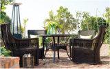 /Rattan خارجيّة/حديقة/[بتيو/] فندق أثاث لازم [رتّن] كرسي تثبيت & طاولة يثبت ([هس1205ك] & [هس] [7601دت])