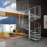 ステンレス鋼のガラス螺旋階段の金属の白階段