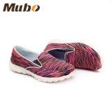 ばねまたは秋の方法Camouflagの女性のスポーツの低いズック靴