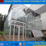 Serre van het Glas van het Frame van het staal de Openlucht Plantaardige met Hydroponic Systemen