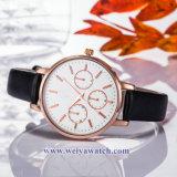Tira de couro OEM Lady Quartz Relógios sabia, Senhoras Assista (WY-17030B)