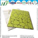 Techo de PVC Panel de PVC de pared 2016 (RN-105)