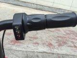 酸電池が付いている小型チェーンドライバー電気スクーター