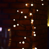 8 grelle Modi + Zeichenkette-Licht der Speicher-Kugel-LED für Innen-/im Freien