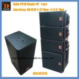 Zeile Zeile Reihen-Lautsprecher-Systems-PROaudio der Reihen-12 des Zoll-Ns12