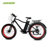 高容量電池が付いている最も売れ行きの良い電気バイクの雪Ebike