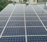 Горячее сбывание! Панель солнечных батарей 2017 высокой эффективности цены промотирования Mono 300W