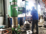 Válvula de Retenção de bolachas de ferro fundido